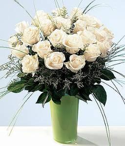 Пеларгония китайская роза гардения